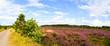 Panorama mit Wanderweg