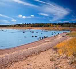 Russia. Autumn sandy coast of the Gulf of Finland