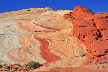 Red Rock Landscape in the Southwest USA