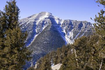 Mount Charleston near Las Vegas, Nevada
