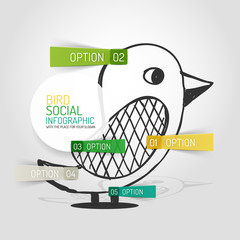 Vector drawn social bird design and infographics