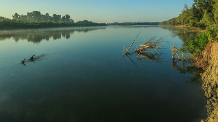 morning on the river