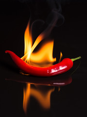 hot pepper - chili and flames on a black background