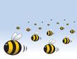 Obrazy na płótnie, fototapety, zdjęcia, fotoobrazy drukowane : Angry Swarm Of Bees Cartoon Illustration