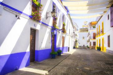 Street with flowers in Cordoba (Calleja de las Flores)