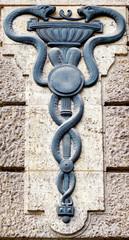 Aesculapian staff - Caduceus