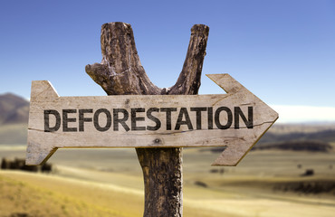 Deforestation wooden sign with a desert background
