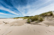 Moving dunes park near Baltic Sea in Leba, Poland - 68776511
