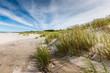 Zdjęcia na płótnie, fototapety, obrazy : Moving dunes park near Baltic Sea in Leba, Poland