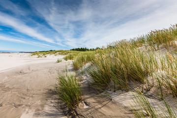 Moving dunes park near Baltic Sea in Leba, Poland