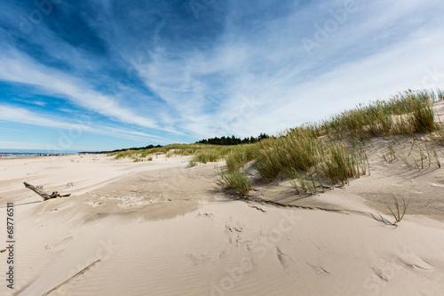 Moving dunes park near Baltic Sea in Leba, Poland - 68776511