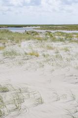 Strand,Salzwiesen,Priele an der Nordseeküste