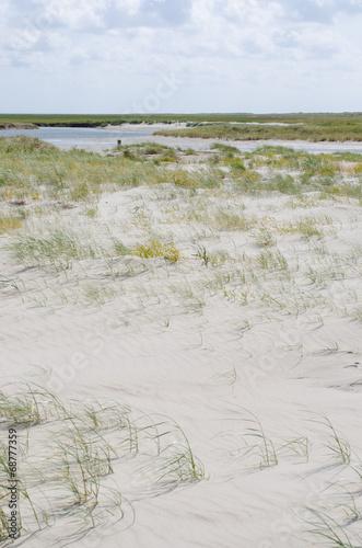 canvas print picture Strand,Salzwiesen,Priele an der Nordseeküste