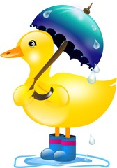 Duck with umbrella in rain