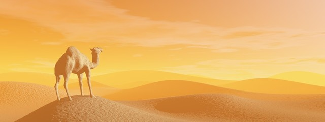 Camel in the desert - 3D render