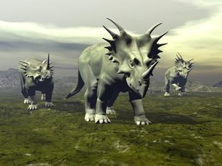 Styracosaurus dinosaurs walking - 3D render