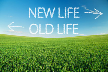 New life vs. old life written in clouds over green field