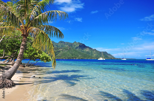 Foto Spatwand Eilanden Turquoise waters off Moorea in Tahiti, French Polynesia