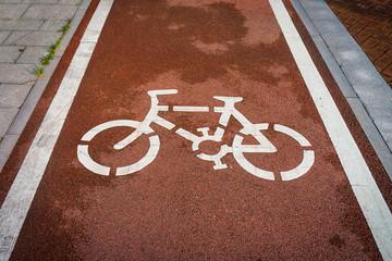 Bicycle symbol on wet bicycle lane
