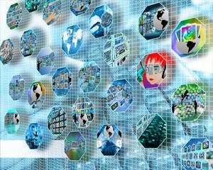 cell net