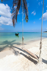 swing, palm tree shadow, boat,  beach