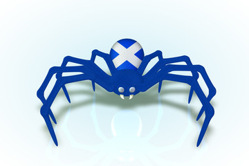 Scotland Flag Spider