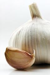 garlic,bulb.