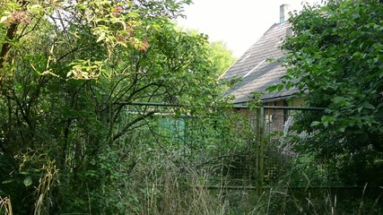 old cottage building - overgrown with nature (bushes, trees)
