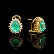 Gold earrings - 68792162