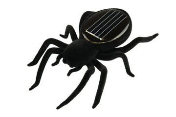 Black spider toy for kids