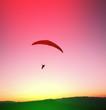 Paraglider - 68792585