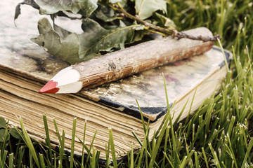 wooden pencil and old book