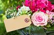 Obrazy na płótnie, fototapety, zdjęcia, fotoobrazy drukowane : pink flowers