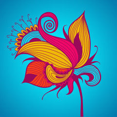 Exotic flower on blue background.