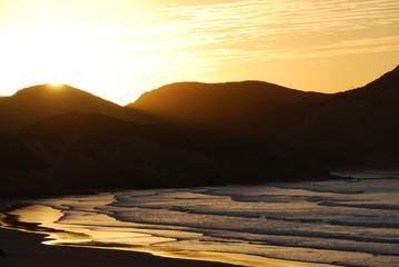 New Zealand Sunset Beach Golden