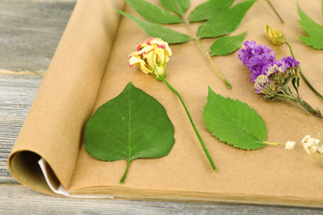 Dry up plants on scrapbook on wooden background