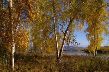 Beautiful nature landscape in autumn