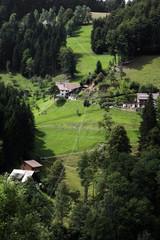 Wildgutach