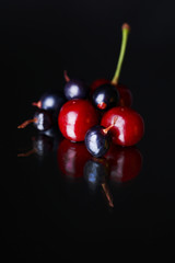 Black and red currants, cherries on black background