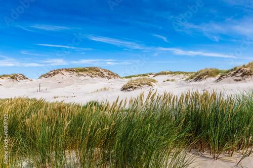 Moving dunes park near Baltic Sea in Leba, Poland - 68801922