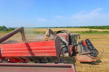 Overloading grain