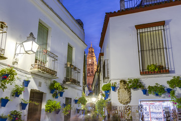 Calleja de las Flores in Cordoba, Andalusia, Spain.