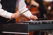 Hands of a child playing a xylophone