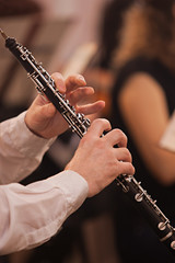 Hands of musician playing the oboe