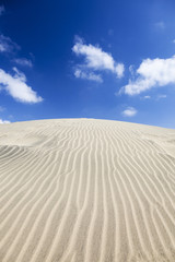 Rippled sand dune. Blue sky and white clouds.