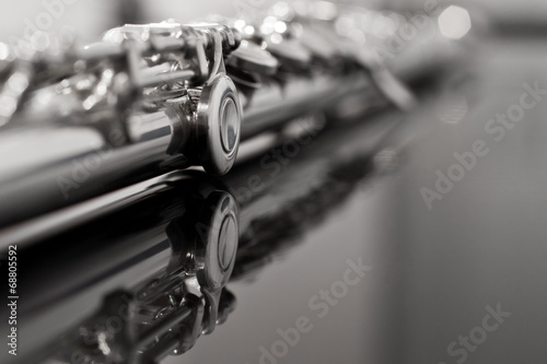 Flute fragment in black and white - 68805592