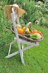 panier de légumes sur une chaise
