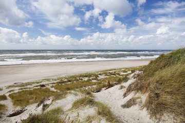 Denmark West Coast. Beach and dunes.