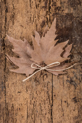 dried autumn leaves on wooden surface