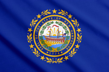 New Hampshire flag waving